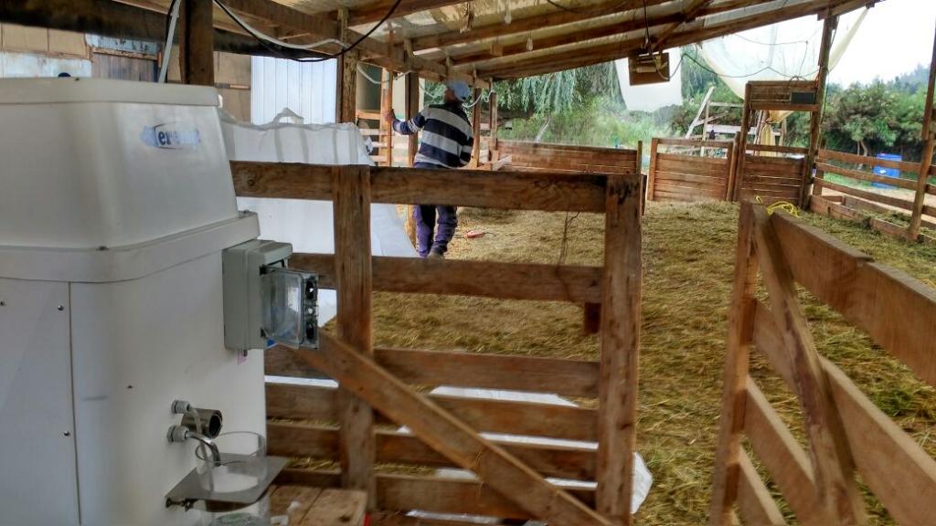 Granja caprina en Chile