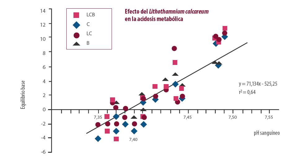 Efecto del Lithothamnium calcareum en la acidosis metabólica
