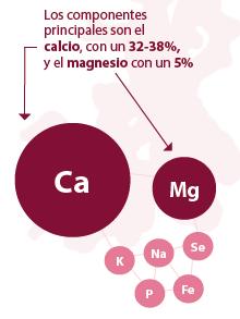 Composición algas rojas Lithothamnium Calcareum